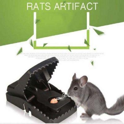 dụng cụ bẫy chuột hiệu quả nhất